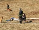 jagdliches-training-26-02-2011-vlg-bernecker-014
