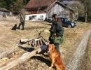 jagdliches-training-26-02-2011-vlg-bernecker-016