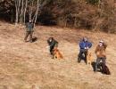 jagdliches-training-26-02-2011-vlg-bernecker-025