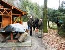 weihnachtswanderung-18-12-2011-036