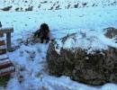 weihnachtswanderung-18-12-2011-056