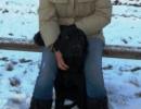 weihnachtswanderung-18-12-2011-064