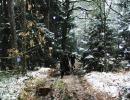 weihnachtswanderung-18-12-2011-081