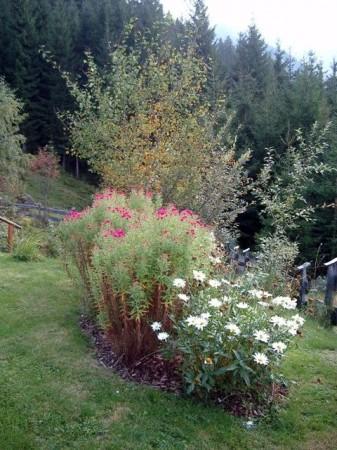 Herbststimmung bei der Jagdhütte